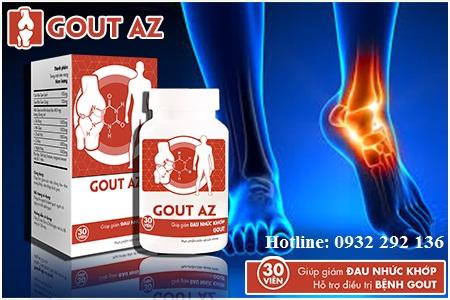 hỗ trợ điều trị bệnh gout