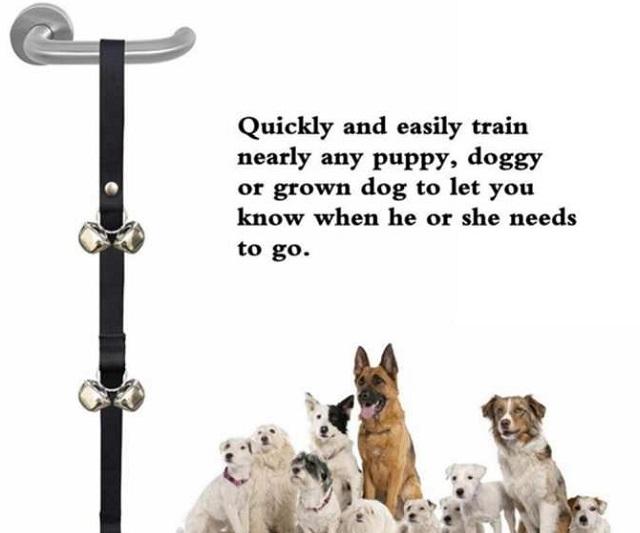 Huấn luyện Pet gọi chủ mở cửa