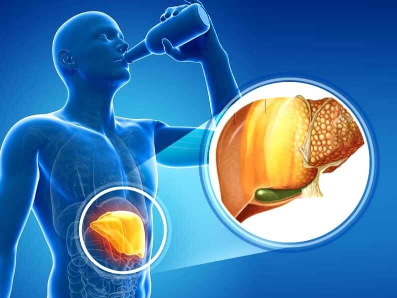 Khi rượu bia vào cơ thể, chỉ khoảng 10% lượng cồn được đào thải qua đường tiểu, 90% còn lại sẽ đi đâu?