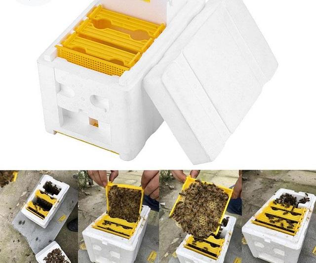 Nuôi ong và thu hoạch tự động